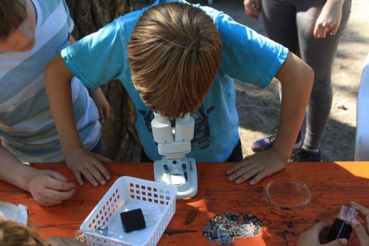 Mikroskopieren-2-1024x683